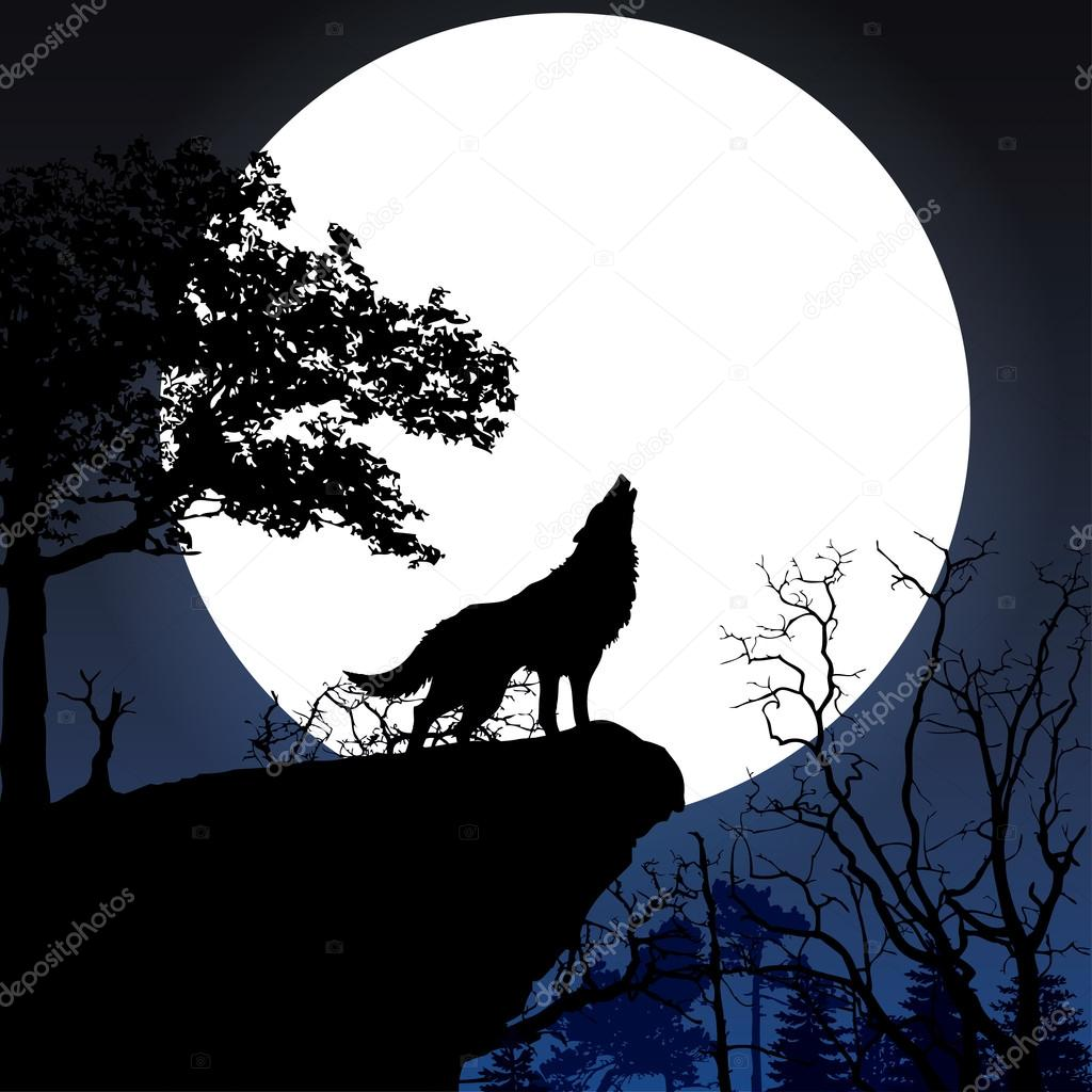 Howling to the full moon