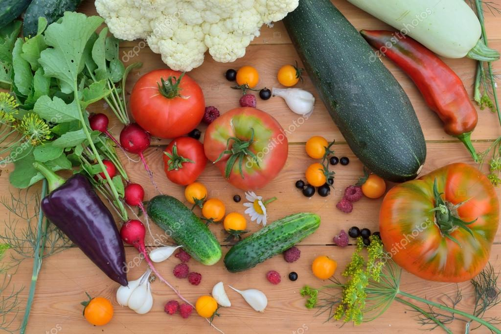 a new crop of vegetables and fruit