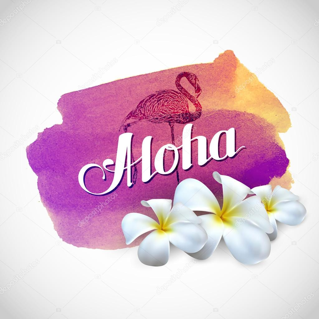 Aloha label with exotic frangipani flowers on watercolor background