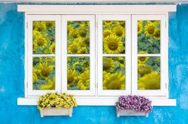 Beautiful Flowers Outside Window