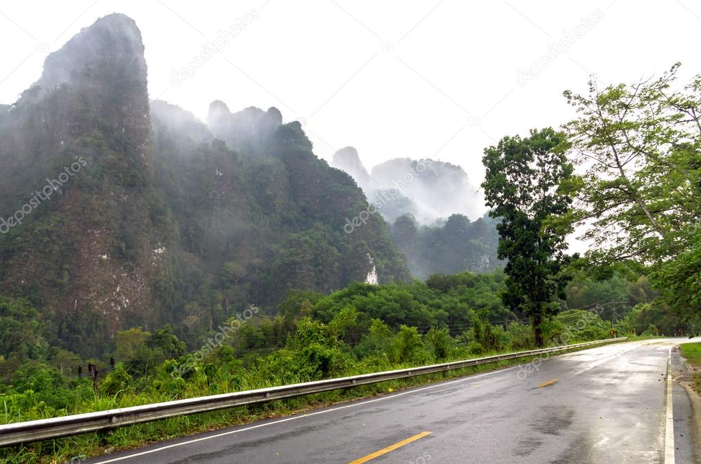 Misty tree forest on the mountain landscape with fog and road, thailand
