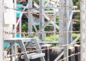 Fotografia Recinto di filo spinato la pericolosa zona di confine