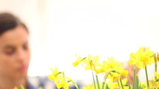 jarní čas, Žena v zahradě pečuje o květiny Narcis