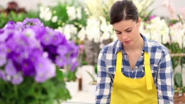 garden springtime concept, woman florist with basket of flowers primroses