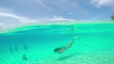 snorkeling stock videos royalty free snorkeling footages