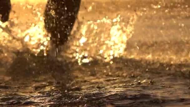 Makro: Mladý sportovec muž běží v mělkém oceánu, Vodní kapky postřikování a okolí