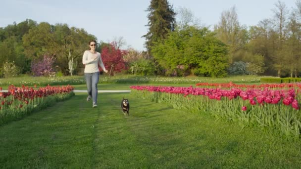 SLOW MOTION: Cheerful young woman spending time with her dog friend running