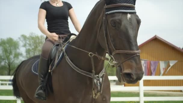 SLOW MOTION CLOSE UP: Young woman horseback riding in manege