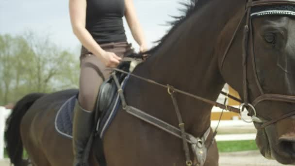 SLOW MOTION CLOSE UP: Female rider horseback riding in arena