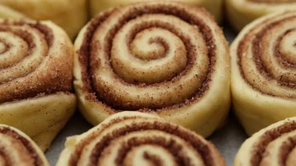 cooking cinnamon rolls or Cinnabon close up. raw cinnamon buns. Production of cinnamon rolls