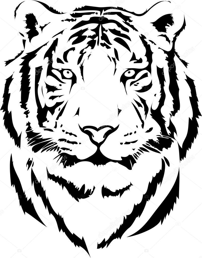 free tiger head clip art - photo #48