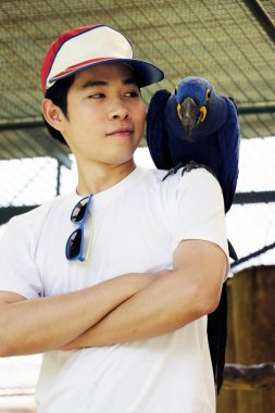Asian man with beautiful Hyacinth macaw parrot