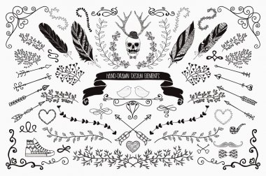 Hand-Drawn Floral Design Elements