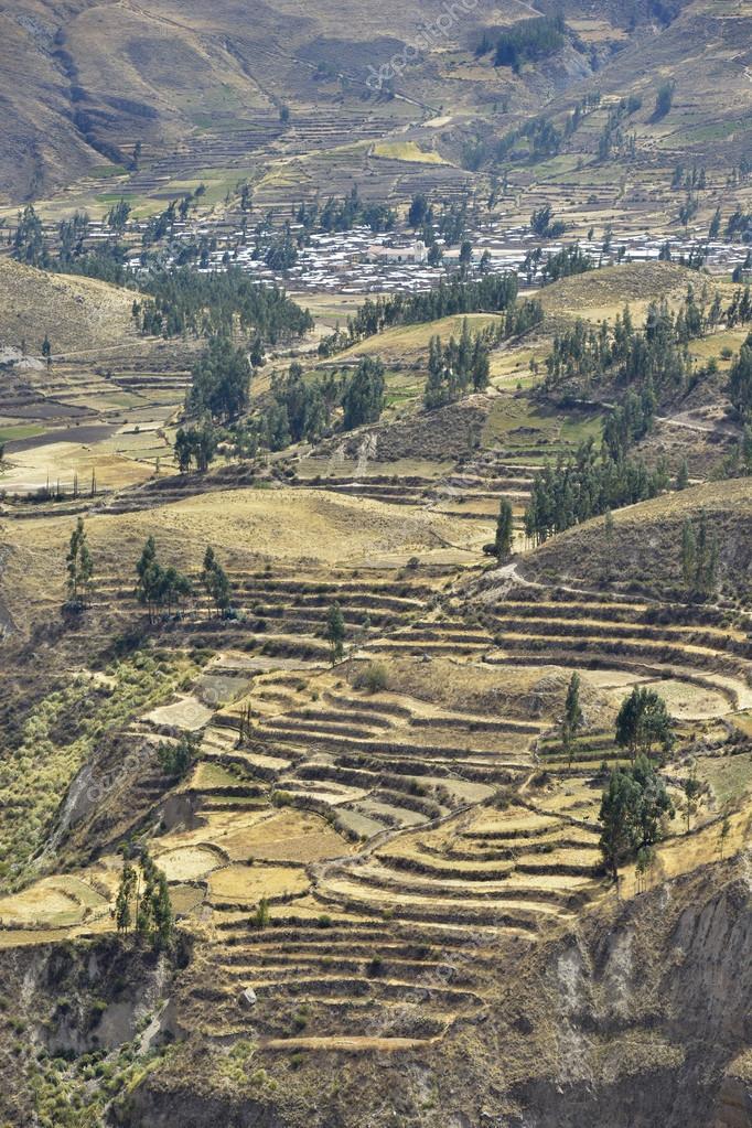 Landscape, Colca Canyon, Peru