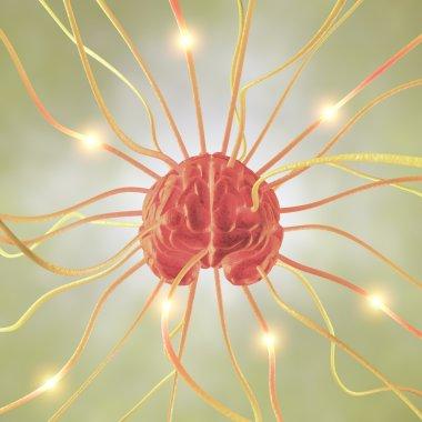 Brain Neuron Concept