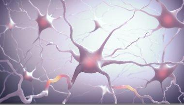 Neurones Inside the brain