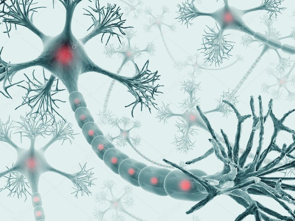Brain with nervous system and neuron