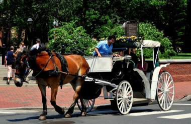 Philadelphia, Pennsylvania:  Tourists Sightseeing in a Hansom Cab