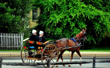 Intercourse, Pennsylvania:  Amish Women Riding in Buggy