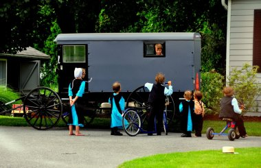 Lancaster County, PA: Amish Children and Buggy