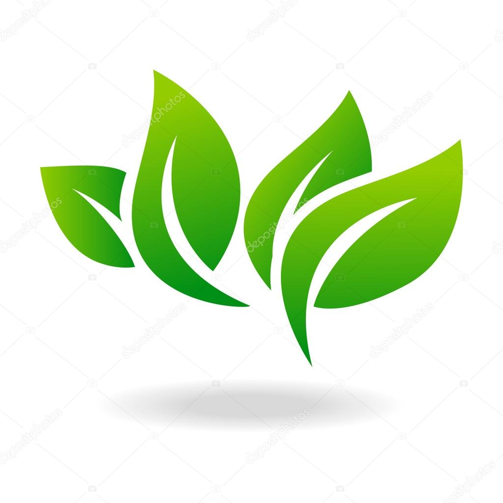 eco ic244ne verte feuille vector illustration isol233 � image