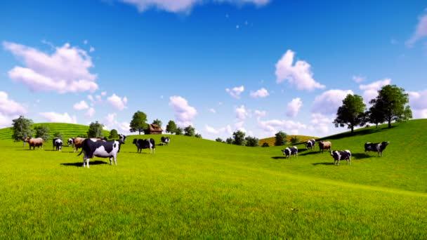 Stádo krav na zelené louky