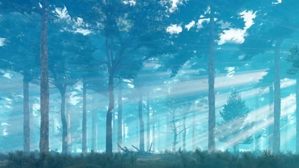 neblige Sonnenstrahlen im Kiefernwald 4k Animation