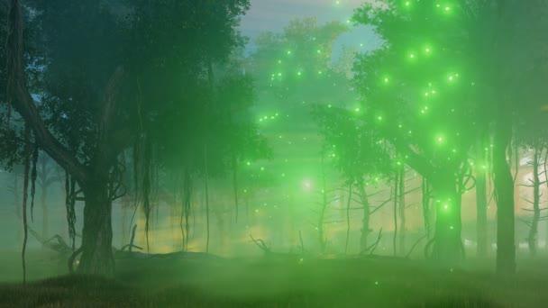 Magische Lichter im nebligen nächtlichen Wald 4k Animation