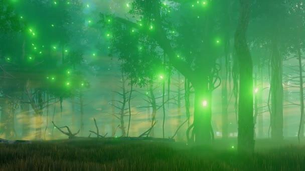 Varázslatos erdei ködös éjszaka 4k animáció