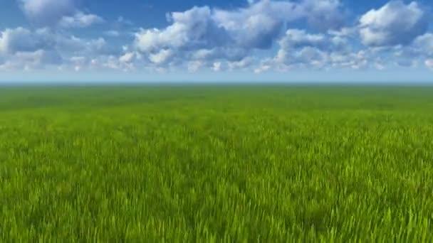 Mozgás a horizonton a zöld füvön keresztül