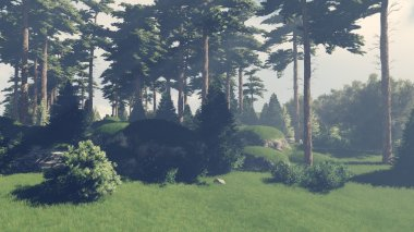 Sunny day in the pine forest 2