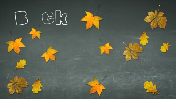 Back to school text on a blackboard with autumn leaves