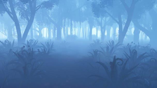 Ködös éjszaka erdő a előtérben lévő páfrány bozót