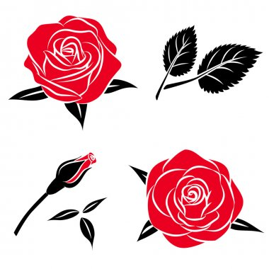 Beautiful flower red black rose set with leaf, Vector roses illustration , isolated on white