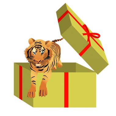 Powerful tiger jumping from a cardboard gift box. Vector illustration isolated on white  background. icon
