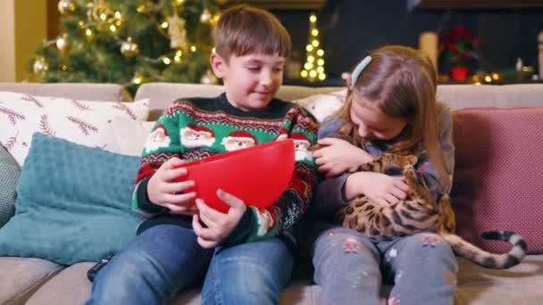 Porträt von zwei wunderschönen lustigen Geschwistern, die mit Bengalkatze spielen und Popcorn in der Nähe des Weihnachtsbaums zu Hause essen. Unterhaltung. Kindheit.