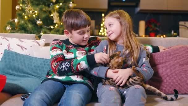 Nettes Paar von kaukasischen Kleinkind Vorschulkinder bleiben zu Hause spielen mit bengal Kätzchen erstaunliche Haustier vor dem Fernseher im Wohnzimmer. Weihnachtsferien.