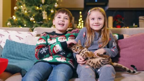 Paar von hübschen und schönen Geschwistern vor dem Fernseher im Wohnzimmer umarmen und streicheln niedliche Bengalkatze. Weihnachtsbaum. Winterurlaub und Familienkonzept.