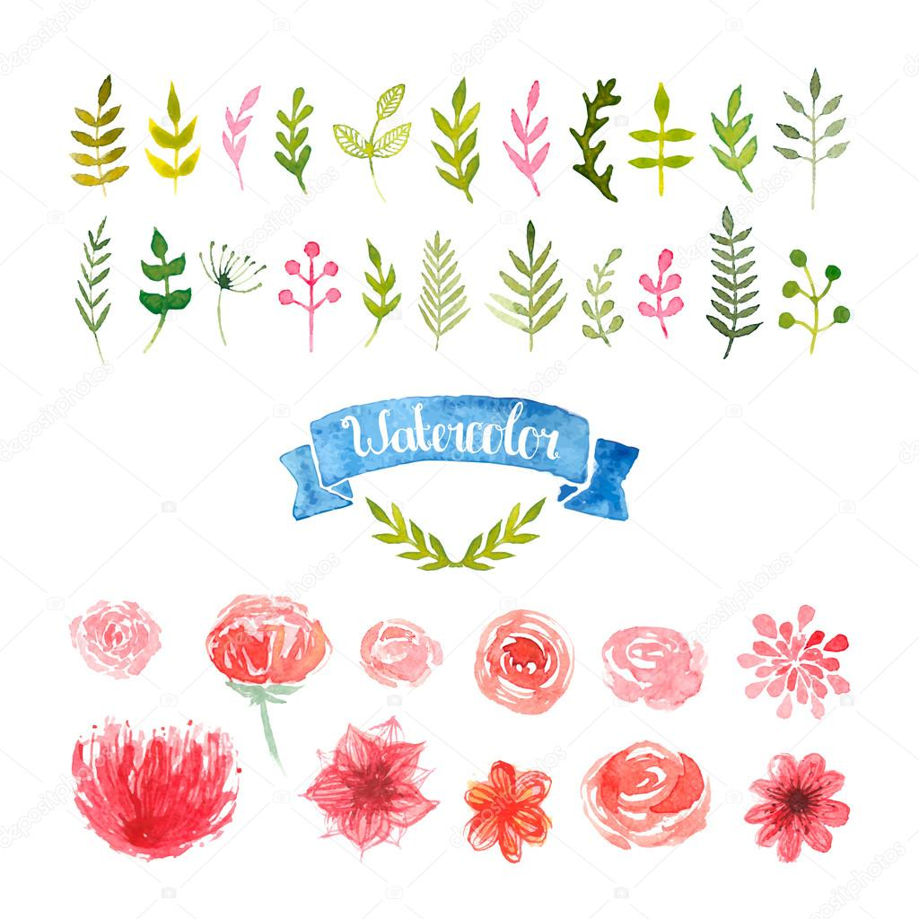 Watercolor flowers, laurels and leaves