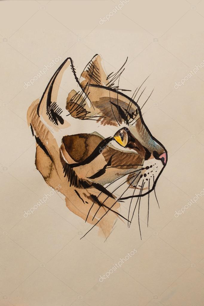 Dessin Chat De Profil dessin de tête de chat — photographie licccka © #88247394