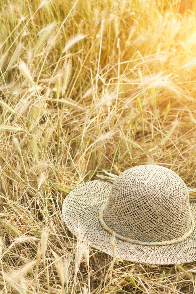 field of wheat with a straw hat