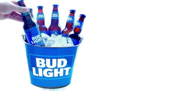 Egy Bud Light Sörvödör hat sörösüveggel, jéggel, fehér alapon..