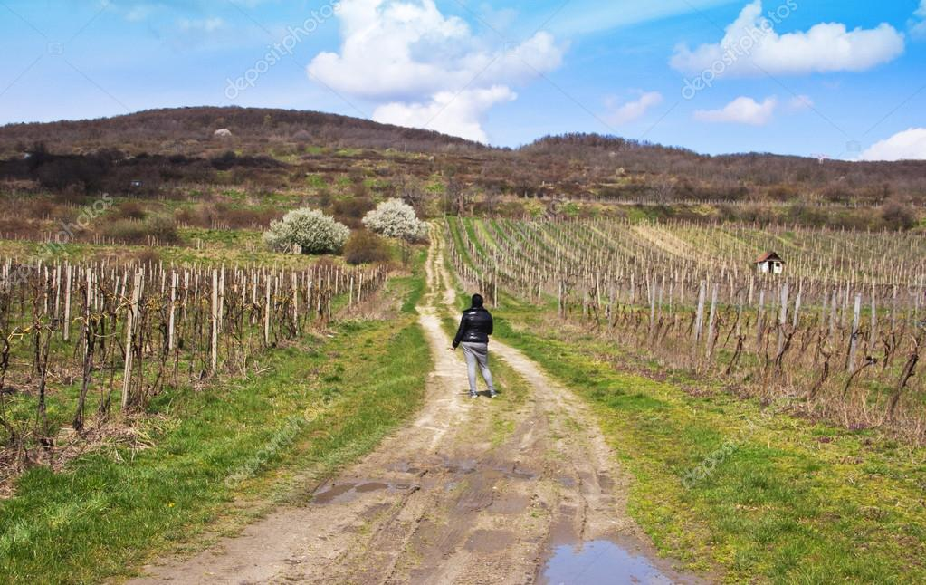 Woman on Pathway in Vineyards