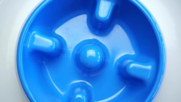 Blaue Farbe langsam Futter Dog Feeder rotierenden auf weißem Hintergrund