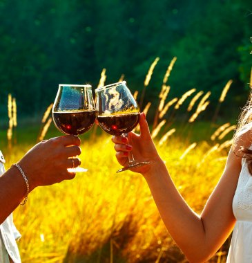 Man and woman clanging wine glasses  at sunset