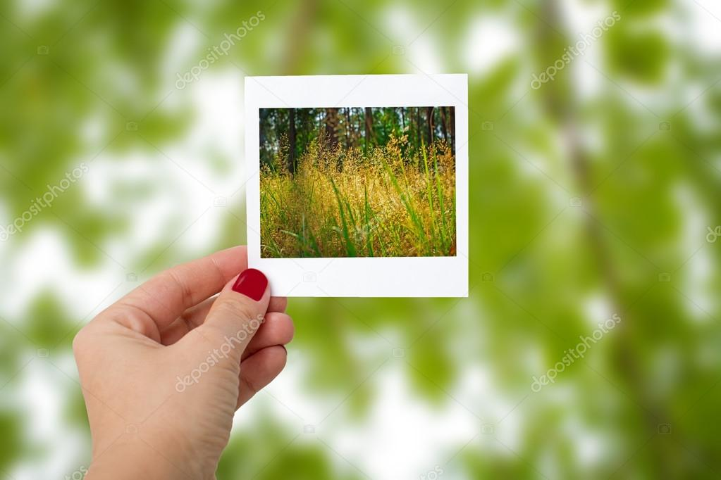 Girl Hand Holding Instant Photo Of nature Landscape, focus on ha