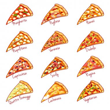 Pieces of the different kinds of pizza.