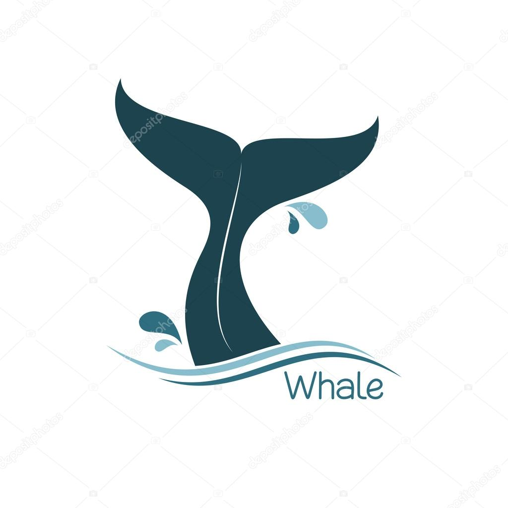 Pics whale tail Celebrity Whale