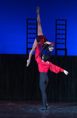 Kyiv National Operetta Theatre showed the ballet