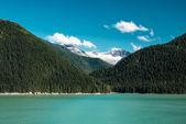 Paesaggio dellAlaska con verde foresta, fiume moutains con la neve